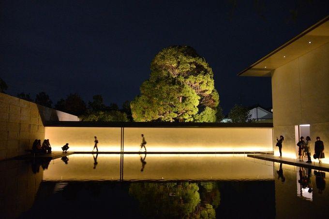 Wall Grazing Landscape Lighting