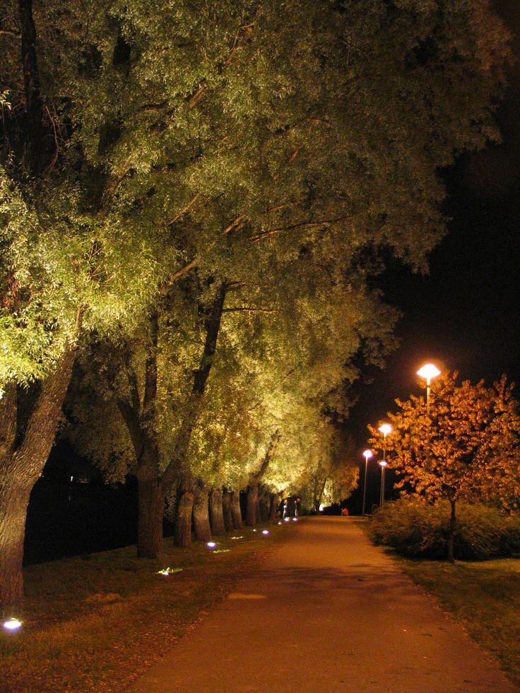 Garden Lighting Designs